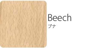 beech ブナ
